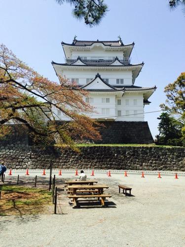 湘南にお住いの方へ。小田原城を甘く見てませんか?