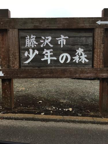 2019年も「藤沢市子どもフェスティバル」が開催します。藤沢市少年の森は本当におすすめです。