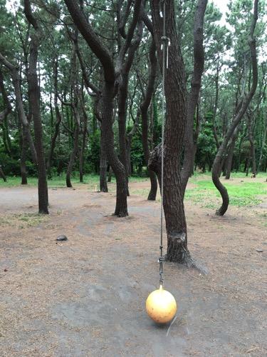 柳島キャンプ場の遊具