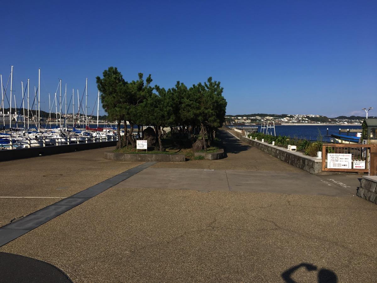 江ノ島のサザエ島にあるタイドプールはあんまり知られてないけど、遊びごたえがあった