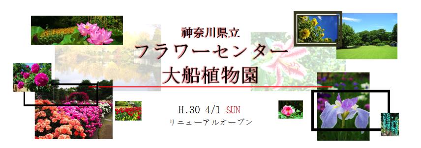 【鎌倉】フラワーセンター大船植物園は2018年4月1日(日)にリニュアーアルオープン!!