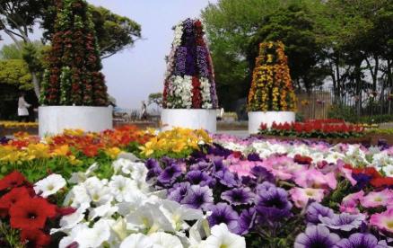 【藤沢】Colors-Fest!enoshima2019が今年も開催。また違った江の島を発見できそうです。