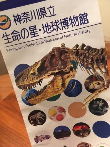 【小田原】地球博物館に行ってきた!!恐竜の迫力に驚愕,安く入れて子供にもオススメ。