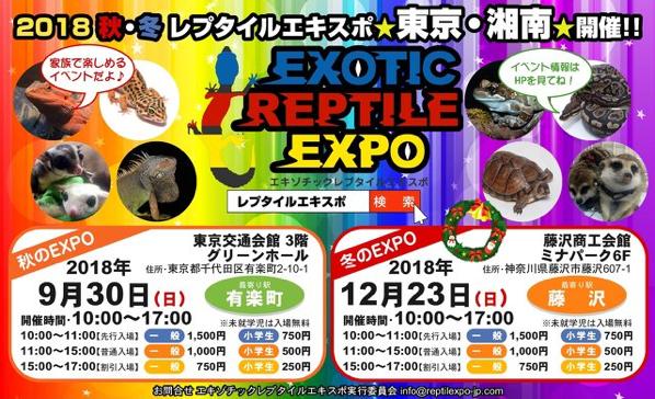 爬虫類と出会えるExotic Reptile Expoが2018年12月23日に藤沢で開催されるようです。