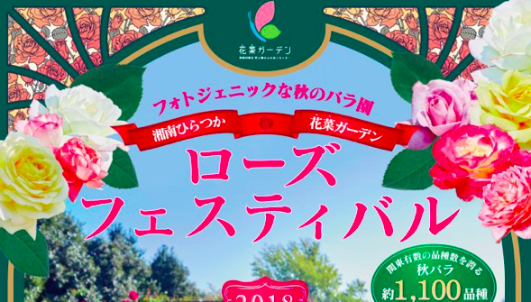 【平塚】「ローズフェスティバル2019~秋~」が2019年10月5日(土) ~11月4日(月)の期間で開催中!!