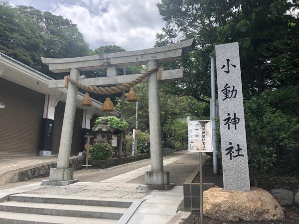 鎌倉にサーフィンしに行くなら、腰越漁港に車を停めて探索してみよう。小動神社に癒された時間。