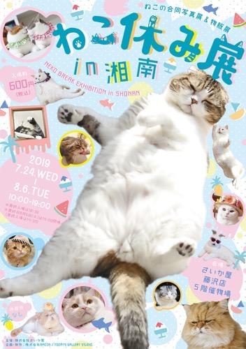 """【藤沢】""""ねこ休み展 in 湘南""""がさいか屋藤沢店5Fで開催するみたい。先着5000名様にポストカードがもらえるらしい。"""