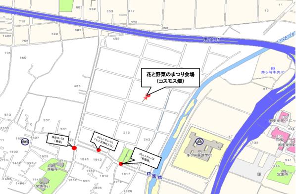 【茅ヶ崎】萩園ファーム21が10月下旬から11月上旬にかけてコスモス畑を一般公開されているみたい。