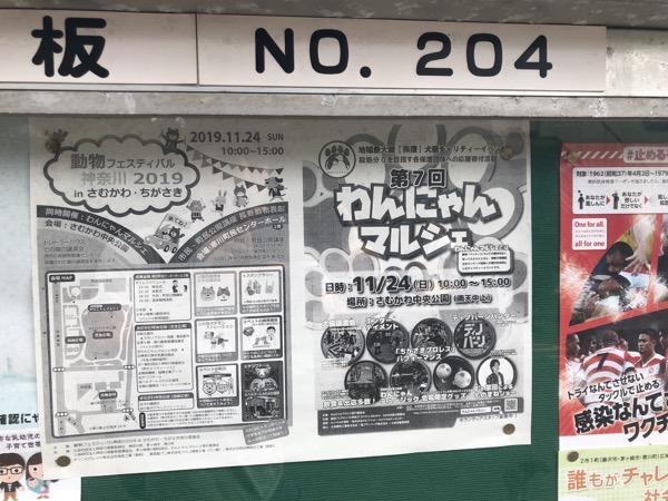 【寒川】第7回わんにゃんマルシェがさむかわ中央公園にて2019年11月24日に開催予定。動物フェスティバルもあるらしい。