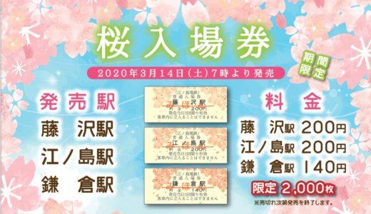 江ノ島電鉄が今年も桜入場券の発売を開始。桜の絵柄が入った切符は限定2000枚