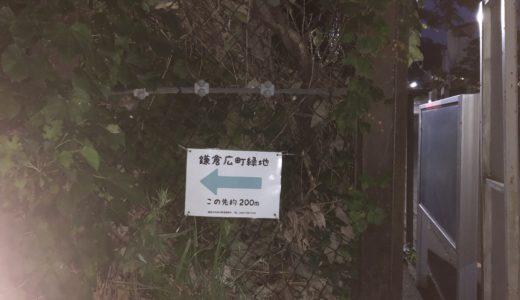 鎌倉広町緑地の蛍を見てきた。